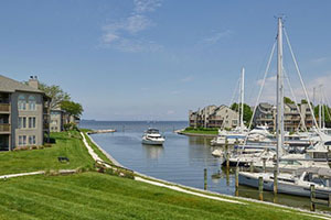 Chesapeake Harbour